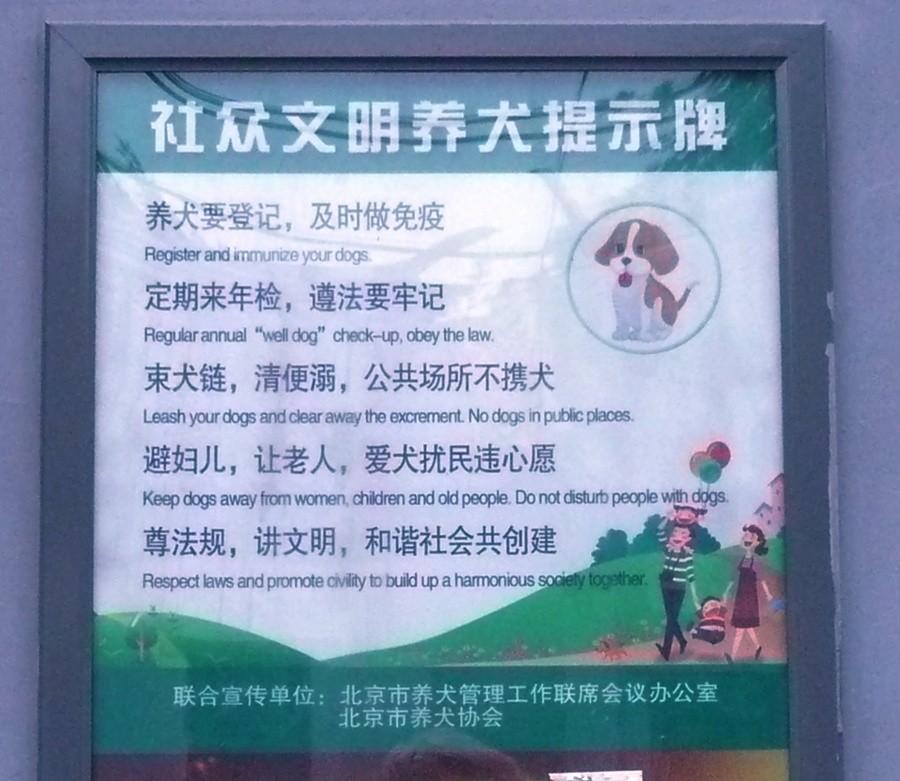 dog_rules.jpg