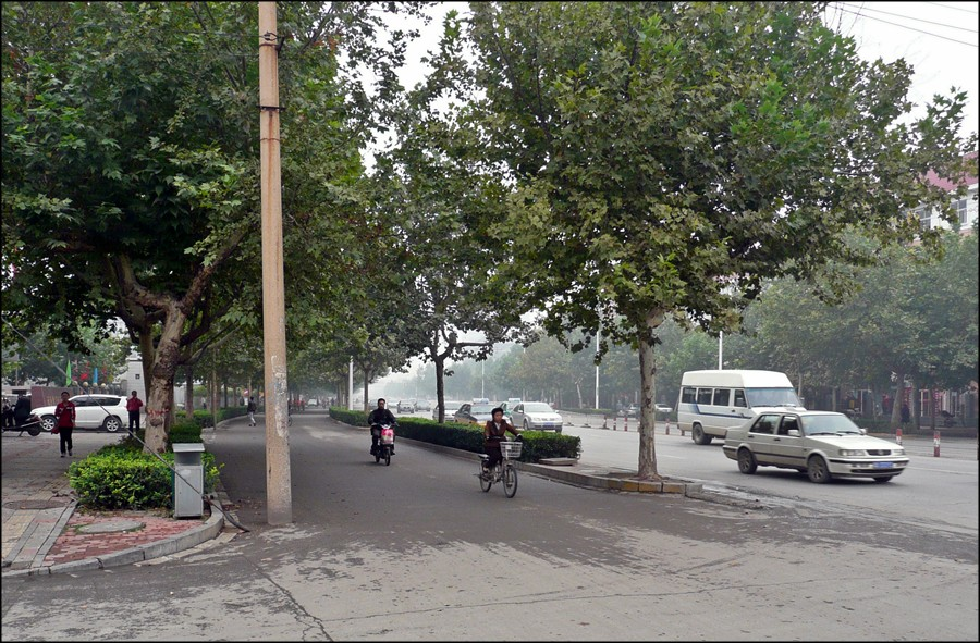 shijiazhuang_bike_lane.jpg