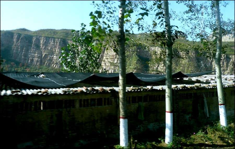 cangyan_countryside_17.jpg