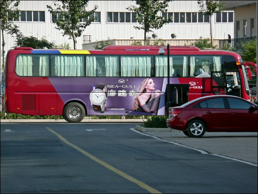 1_seagull_bus_2.jpg