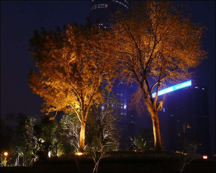 1_tianjin_night_45.jpg